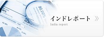 インドレポート
