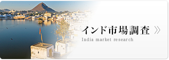 インド市場調査